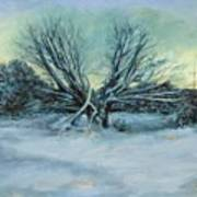 Trees and snow Art Print