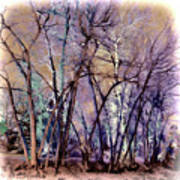 Trees Are Poems That The Earth Writes Upon The Sky Art Print