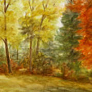 Trees At Fall Art Print