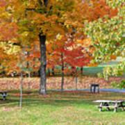 Trees Begins Autumn Color Art Print