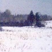 Trees By The Snow Field Ae Art Print