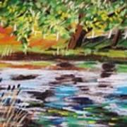Trees Edge The Pond Art Print