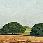 Trees On Field Art Print