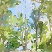 Trees On Ski Island, Banana River, Cape Canaveral, Fl. Art Print