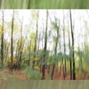 Trees On The Move Art Print