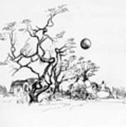 Trees Rocks And A Ball Art Print