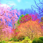 Trees With Color Art Print