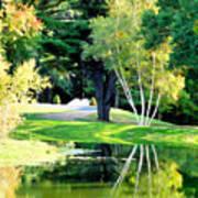 Trees With Mirror Lake 2 Art Print