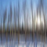 trees Alaska blue abstract Art Print