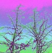 Treetops 5 Art Print