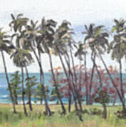 Tres Palmas Art Print by Sarah Lynch