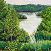 Tributary Salt Fork Lake Ohio Art Print