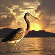 Tricolored Heron At Sunset Art Print