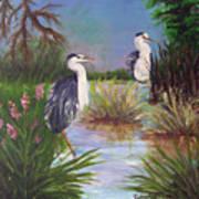 Tricolored Heron Art Print