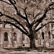Trinity Episcopal Cathedral Court Yard Art Print