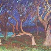 Trinity Tree By Moonlight Art Print
