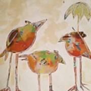 Trio Birds Art Print