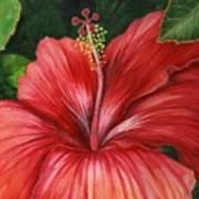 Tropic Fire Art Print