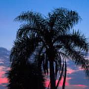 Tropic Sunset In Floirida Art Print