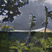 Tropic Wind Art Print