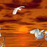 Tropical Birds And Sunset Art Print