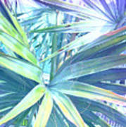 Tropical Dreams In Pastel Purple-blue Art Print