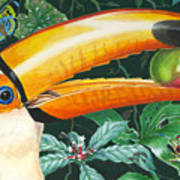Tropical Rain Forest Toucan Art Print