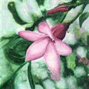Tropical Reflection Art Print