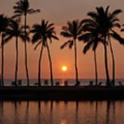 Tropical Sunset Silhouettes  Art Print