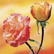 Tropicana Roses 2 Art Print