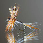 Trout Fly 2 Art Print