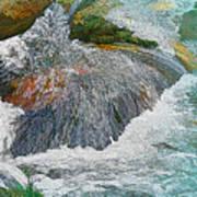 Trout Stream Art Print