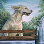 Truck Queen  Art Print