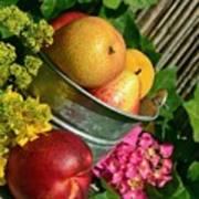 Tub Of Apples Art Print