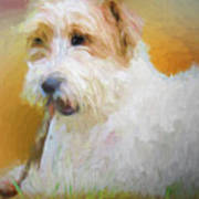 Tuffy The Russell Terrier Art Print