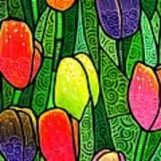 Tulip Glory Print by Jim Harris