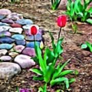 Tulip Rock Garden Art Print