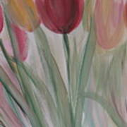 Tulip Series 3 Art Print