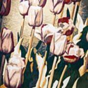 Tulip Sheltered Art Print