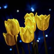 Tulip Twinkle Art Print