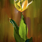 Tulip White Yellow Petals #h5 Art Print