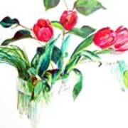 Tulipes Art Print