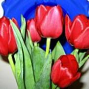 Tulipfest 1 Art Print