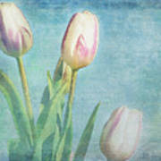 Tulips Day Art Print