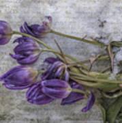 Tulips Frozen Art Print