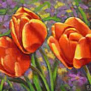 Tulips In The Sun Art Print