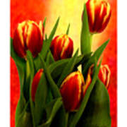 Tulips Jgibney Signature  5-2-2010 Greenville Sc The Museum Zazzle For Faa20c Art Print