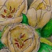 Tulips Trio Art Print