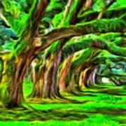Tunnel Tree Art Print