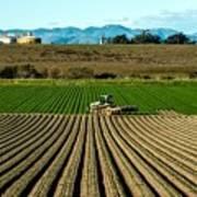 Turning The Soil Art Print